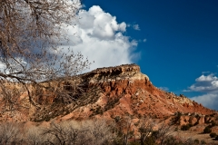 Front Yard Ghost Ranch NM